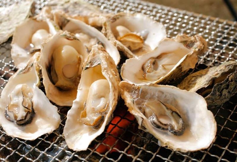 栄養豊富なリアス式海岸で育つ絶品カキ「九十九島かき食うカキ祭り」