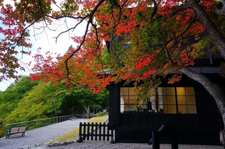 紅葉にっこり滞在②「英国大使館別荘記念公園」で紅葉狩り