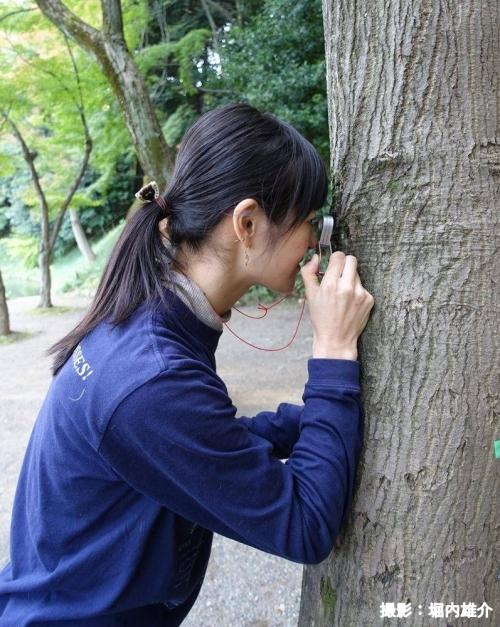 コケ愛好家・藤井久子さんに聞く! ご近所散歩で楽しむコケトリップのすすめその2