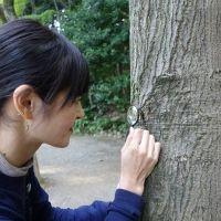 コケ愛好家・藤井久子さんに聞く! ご近所散歩で楽しむコケトリップのすすめ