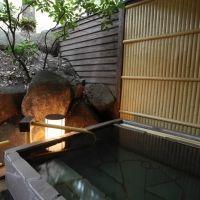 遠くの行楽地より近くの避暑地へ。鬼怒川の温泉宿で身も心もときほぐそう