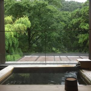 都会の喧騒を忘れてのんびり。神奈川県「静観荘」で箱根湯本温泉を満喫!