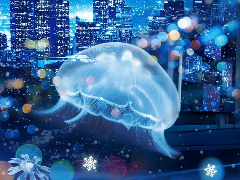 すみだ水族館で都会が雪に包まれる「雪とクラゲ」開催中