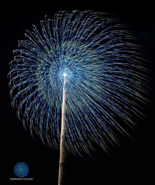 来年への願いを込めて! 花火マニア・安斎幸裕さんに聞く一生に一度は見るべき花火大会3選その3