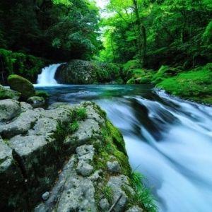 西日本有数の景勝地が復活!熊本「菊池渓谷」が2年ぶりにオープン決定