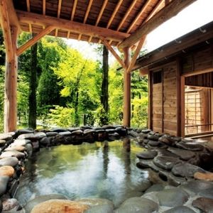 一人旅デビューしよう!新潟県で宿泊してみたいおすすめ宿その0