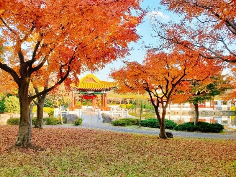 【7】中国の伝統的かつ本格的な山水庭園「瀋秀園」/神奈川県・川崎市