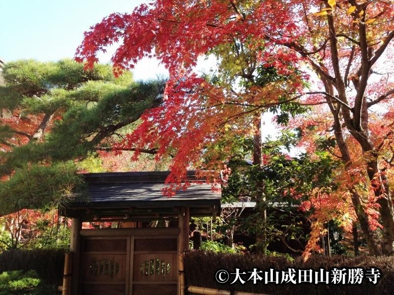 【10】新勝寺の境丘地の大庭園「成田山公園」/千葉県・成田市