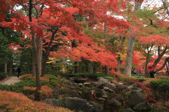 【関東】紅葉シーズンに行きたい! 旅気分が味わえる庭園10選 その4
