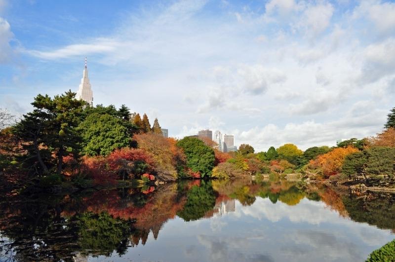 【3】日本における風景庭園の名作「新宿御苑」/東京都新宿区・渋谷区