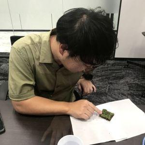 """コケ愛好家・藤井久子さんによる""""コケトリップ""""の魅力を学ぶオンラインイベントを実施しました!"""