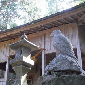 狛犬じゃない…!?なんと「狛鷹」がいる神社を大分県で発見!