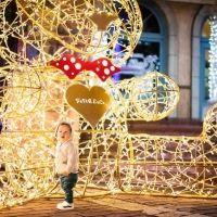 【和歌山】28万人が来場した光の祭典『フェスタ・ルーチェ』が今年も開催