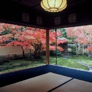 ご縁の国・島根。穴場から定番まで訪れたい観光スポット4選