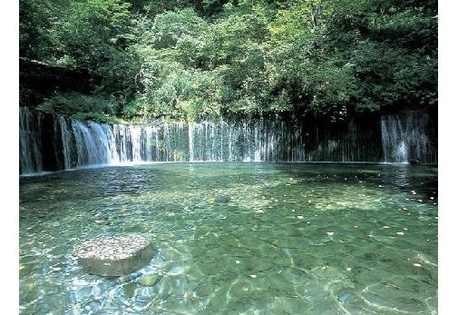 まずは、癒しを求めて「白糸の滝」へ