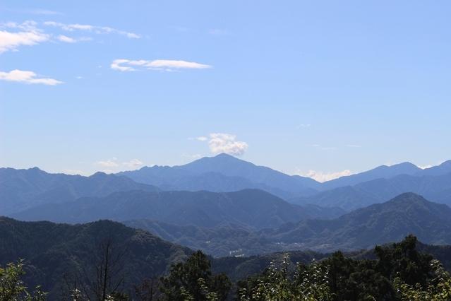 新宿からのアクセスもいい高尾山