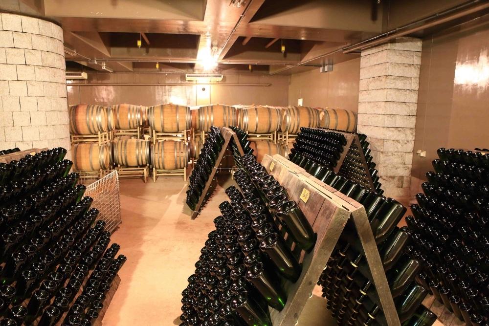 美味しい国産ワインに出会える!安心院葡萄酒工房