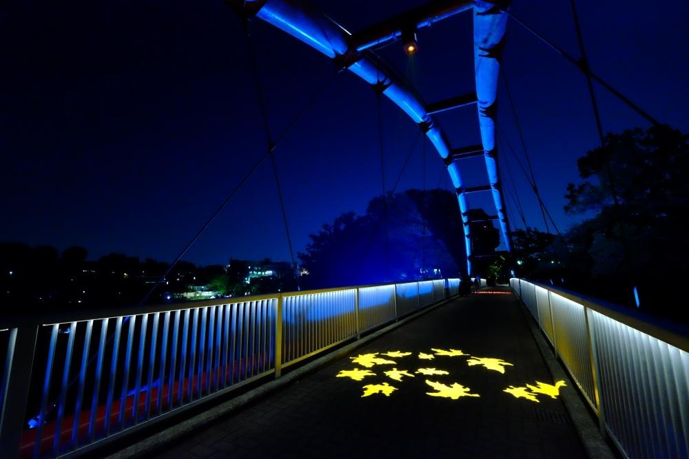 割岩橋ライトアップ