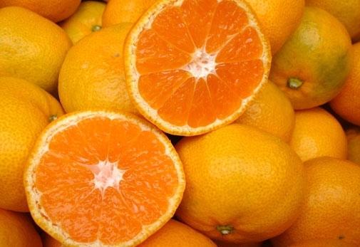 旬の柑橘類をお取り寄せしてパワーチャージ!
