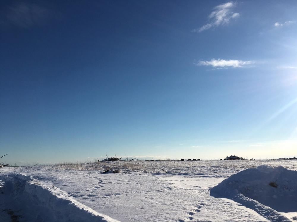 《体験レポ》冬の北海道、防寒対策・服装で後悔したことしなかったことその2