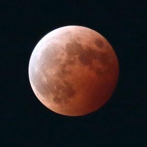 約3年ぶりの皆既月食を展望台で観察!サンシャイン60展望台が延長営業実施