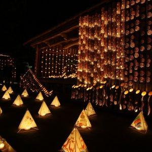 京都じゃないよ。福岡県にある清水寺で幻想的な竹灯籠イベント開催