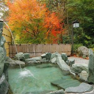 秘湯感ある露天風呂!「祖谷渓温泉 ホテル秘境の湯」でおこもりステイ