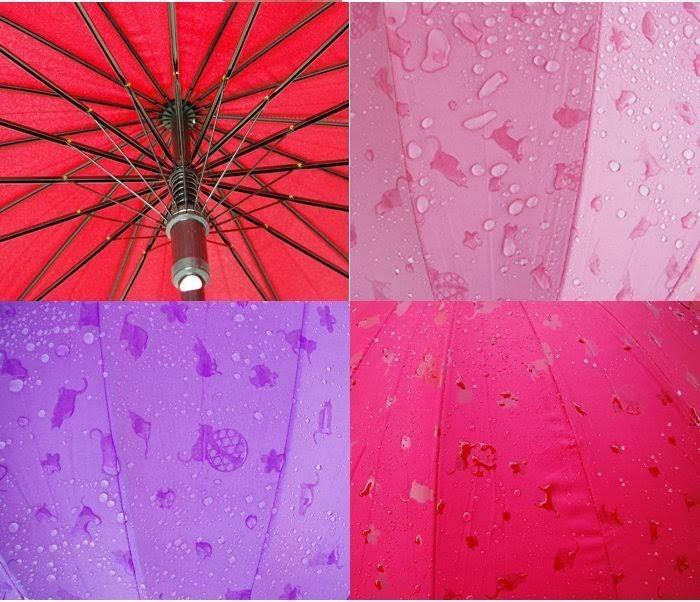 雨に濡らしたくなっちゃう不思議な傘!? by高橋沙苗さん(大阪)