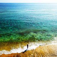 <動画つき>ユニークすぎる! 南の離島・沖永良部のワイルド極めた絶景あっちこっち【連載第45回】
