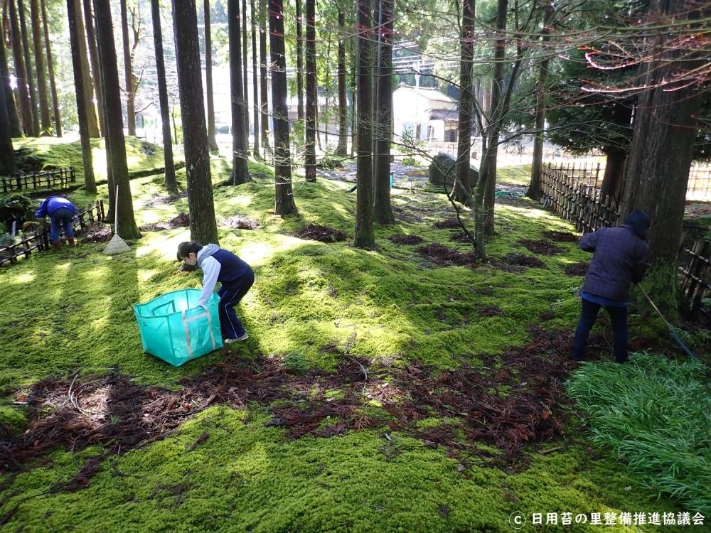 苔の里の魅力 ④苔庭掃除、「苔ゼミ」などのイベントに参加できる