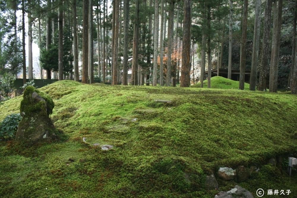 苔の里の魅力①静寂に包まれた空間がすばらしい