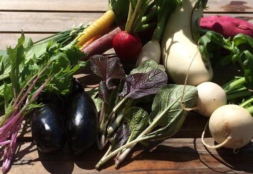 自家製野菜を使用した古民家で味わう創作料理をディナーにいかが?「田伝夢思」