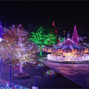 【東京の厳選スポット4選】この冬おすすめのイルミネーションはココ