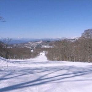 東京から約2時間でパウダースノー!?群馬県「たんばらスキーパーク」とは