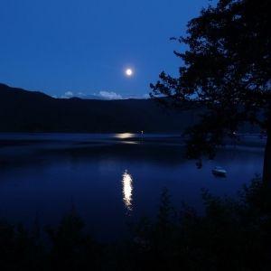 月を近くに感じたことある?大阪府の「お月見」おすすめスポット4選
