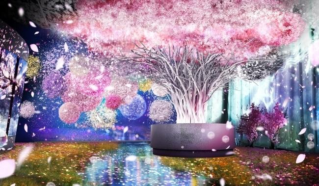 桜の花びらが舞う素敵な空間でドリンクやおみくじが楽しめる