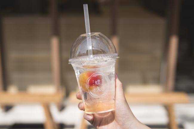 世界初の梅体験専門店!チョーヤ梅酒が手掛ける店舗が京都にオープンその4
