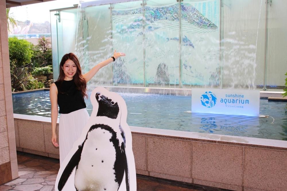 「サンシャイン水族館」×「缶つま」がコラボレーション!
