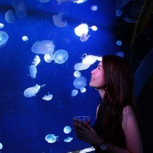 《体験レポ》水族館でちょい飲み!「缶つまナイト in サンシャイン水族館 2018」に潜入