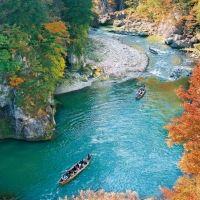 【関東】自然を感じるアクティビティスポット3選