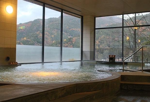 祖谷渓温泉 ホテル秘境の湯