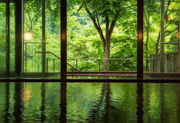 「緑霞山宿 藤井荘」の魅力②歴史ある名湯を愉しむ