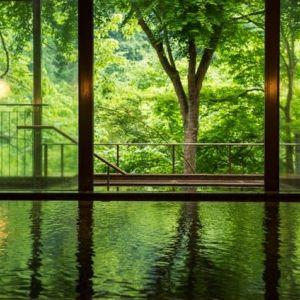 渓谷の四季と名湯・山田温泉に癒やされる。いつか泊まりたい正統派旅館