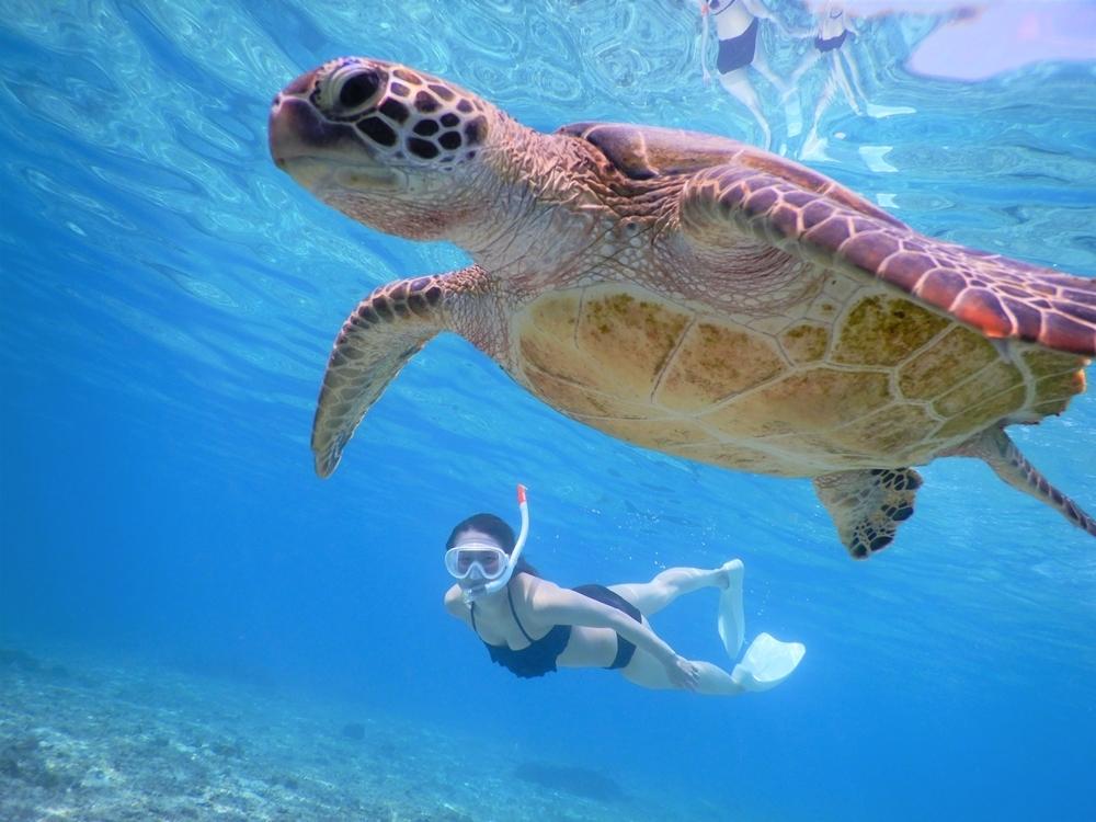 宮古島なら冬でも海満喫。マリンアクティビティを楽しむオフシーズン旅その4
