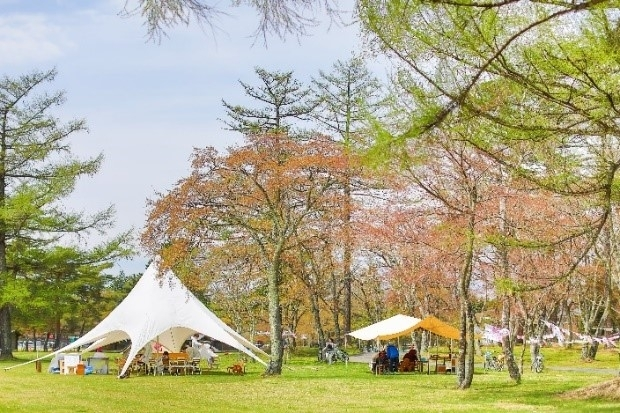 広大なリゾートエリアで花いっぱいのエコイベントが開催