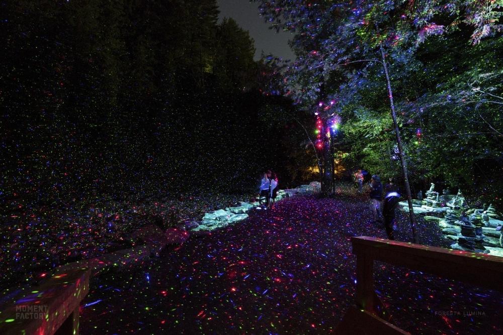 カナダのデジタルアート集団によるナイトウォークも注目。長崎・伊王島にリゾート施設が今春誕生その2