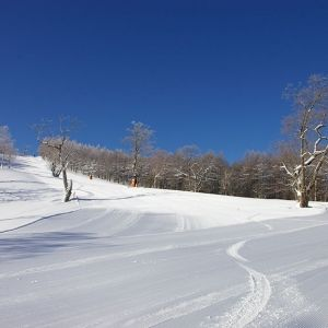 スキー×温泉で愉しさ倍増!岐阜県「めいほうスキー場」の魅力