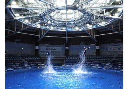 一度は行ってみたいおすすめの水族館②アクアパーク品川