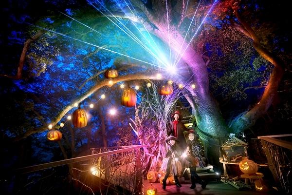 光の魔法に挑戦! リゾナーレ熱海「魔女の住む森のハロウィン」