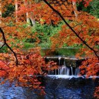 四季折々の自然も満喫。香川県の野外博物館「四国村」は楽しみいっぱい!